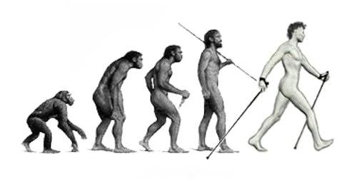 NW Evolution