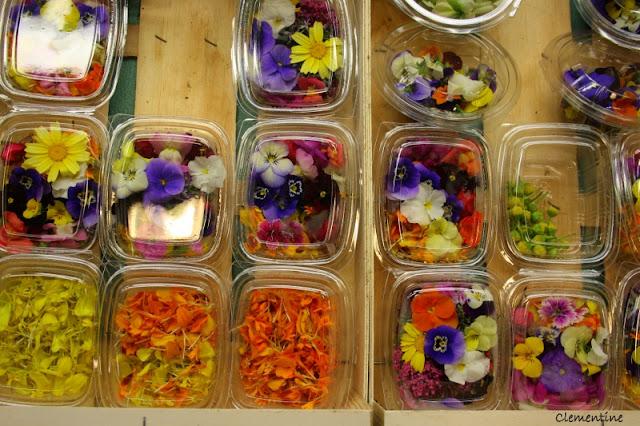 le blog de clementine salade aux fleurs comestibles. Black Bedroom Furniture Sets. Home Design Ideas