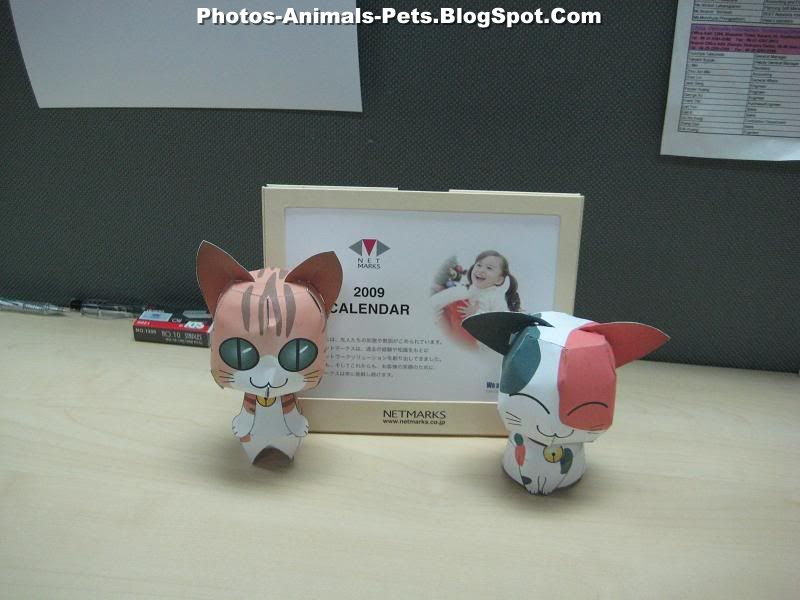 http://4.bp.blogspot.com/-99FgHrTCeeU/Te_JIaex7BI/AAAAAAAABSs/CP9kAjihDPs/s1600/dogs%2Band%2Bcats_0003.jpg