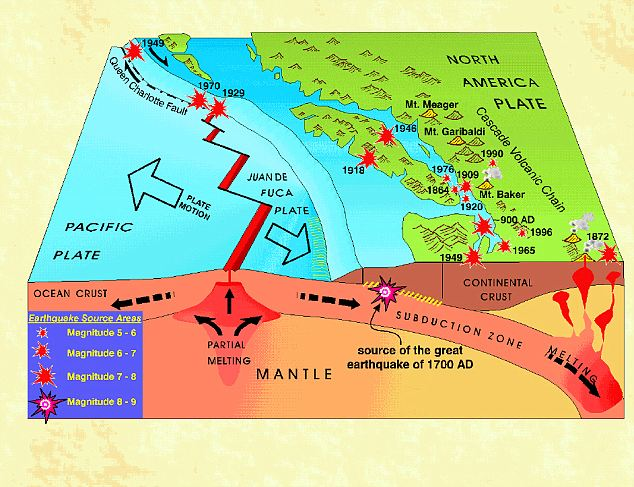 The North West Coast Of The U S Could Be Devastated By A Huge Movement Of Undersea Plates Known As A Megathrust Earthquake Scientists Say