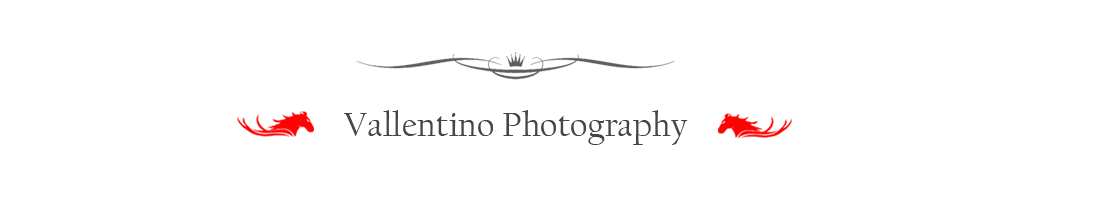 Vallentino Photography