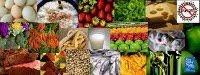 Nuestro blog de Los Alimentos. Curso 2008/2009