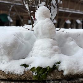 Mini Snowman.