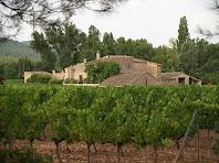 El mas Fransola amb les seves vinyes emparrades