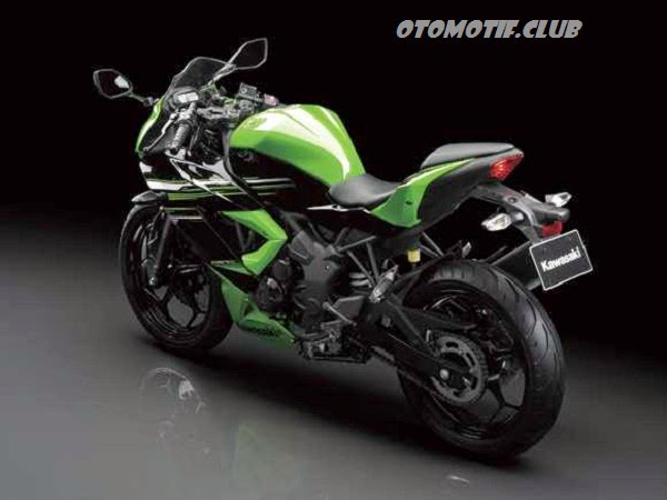 Kawasaki Ninja RR Mono green