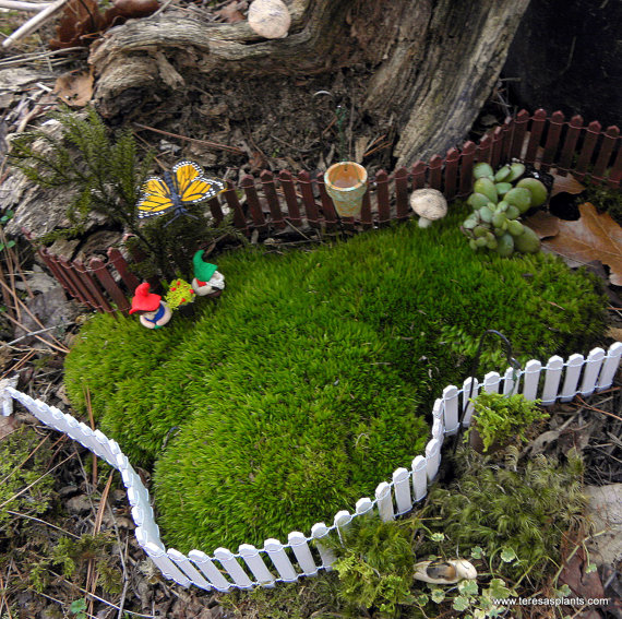 Foraging For Fab In The Fairy Garden Teeny Tiny Tuesdays