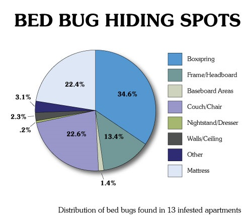 How Effective Are Bed Bug Mattress Covers How To Kill Bed Bugs Get Rid Of Bed Bugs | Apps Directories