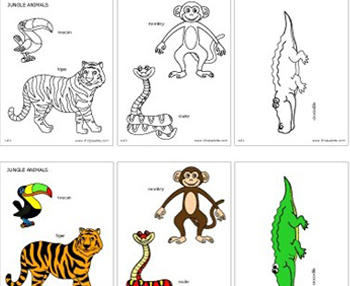Jungle+Animals+Activities Jungle Animals Activities http://www ...