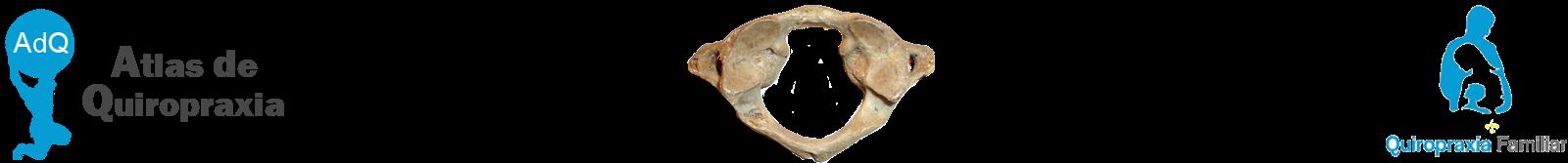Atlas de Quiropraxia