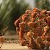 La force du travail en équipe: les fourmis