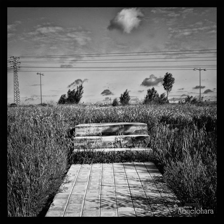 Fotografía en blanco y negro. Abuelohara