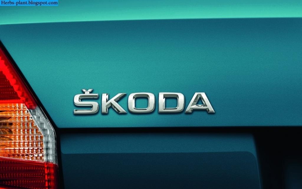 Skoda fabia car 2013 logo - صور شعار سيارة سكودا فابيا 2013