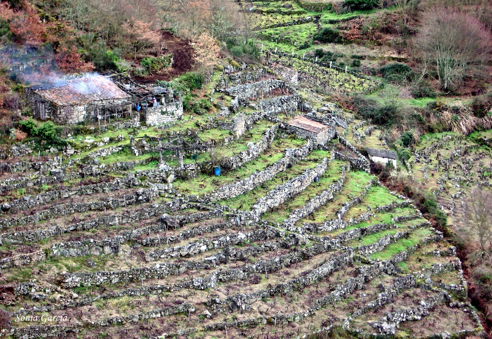 Galicia milenaria evoluci n geomorfol gica for Terrazas fluviales