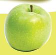 Bagian Tumbuhan Dan Fungsinya buah