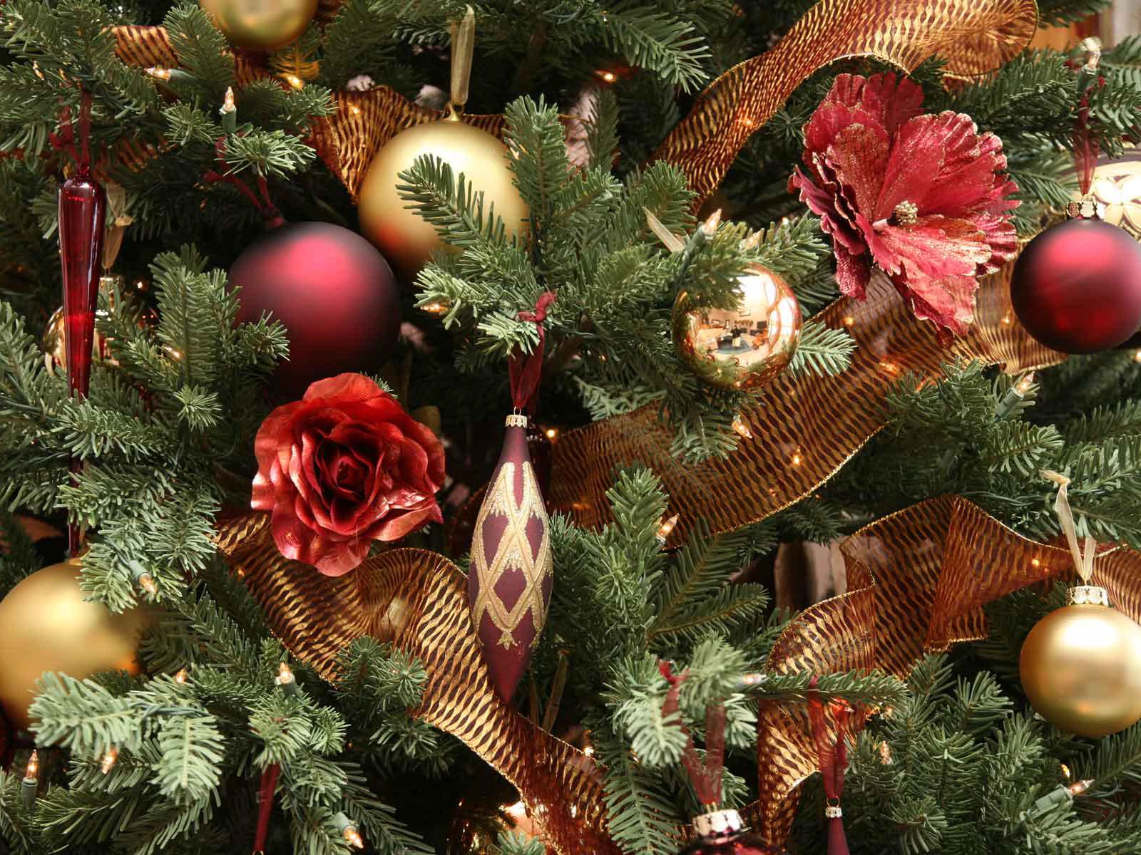 Christmass Tree wallpapers