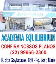 Academia Equilibrium