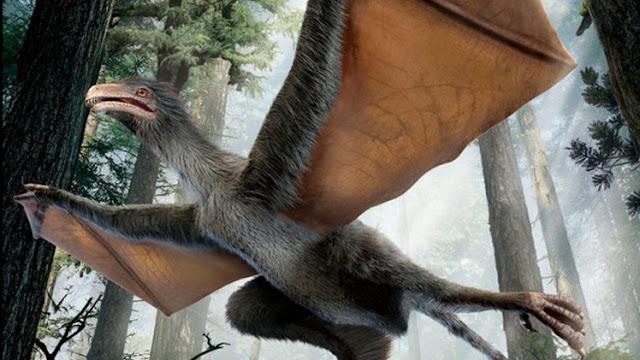 الديناصور الخفاش -