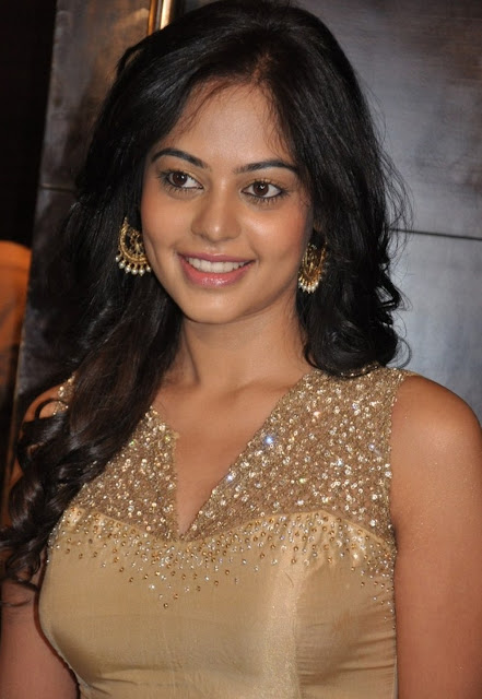 Tollywood Actress Bindu Madhavi Hot Pics Gallery