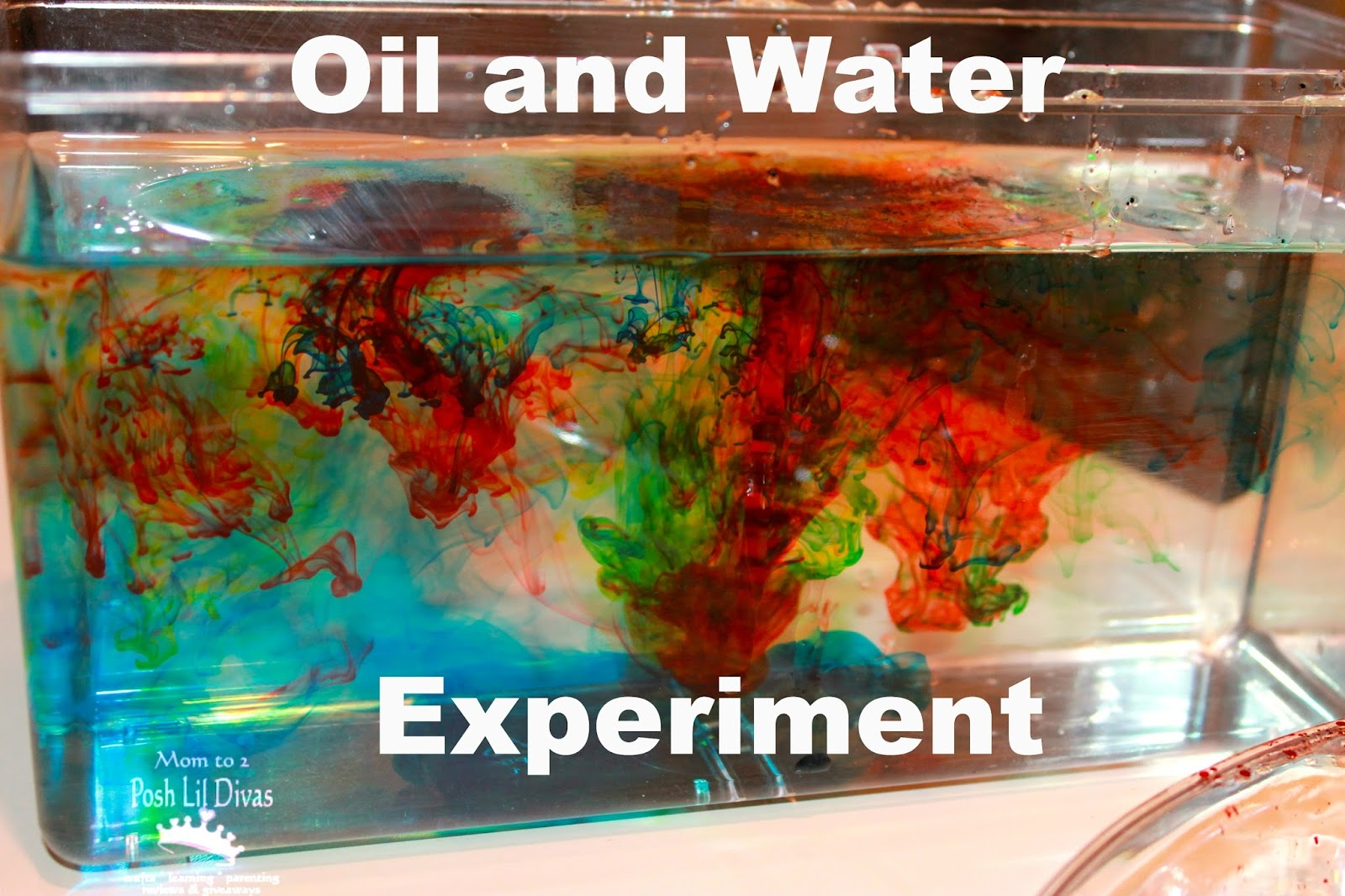 Mom to 2 Posh Lil Divas: Liquids Experiment with Oil, Water and Food ...