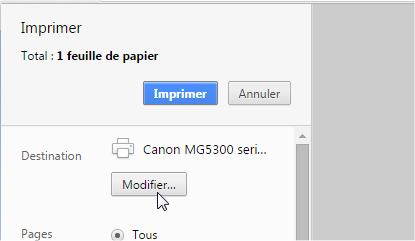 capture d'écran Google Chrome