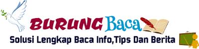 Solusi Lengkap Baca Info,Tips Dan Berita | Burung Baca Blog