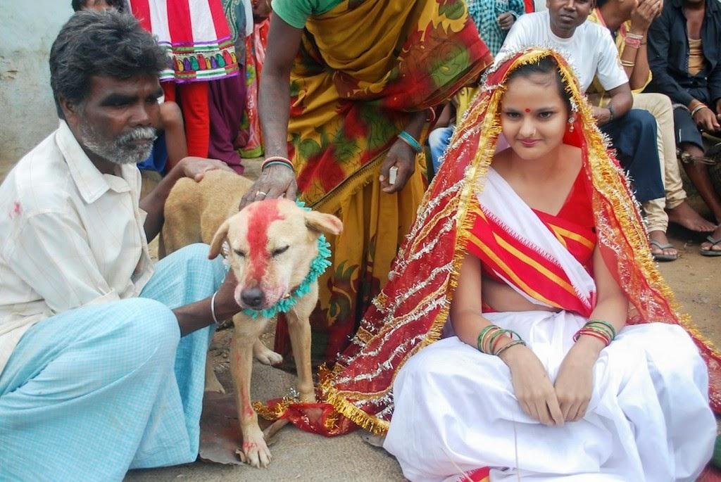 Halau Roh Jahat, Gadis India Nikahi Anjing
