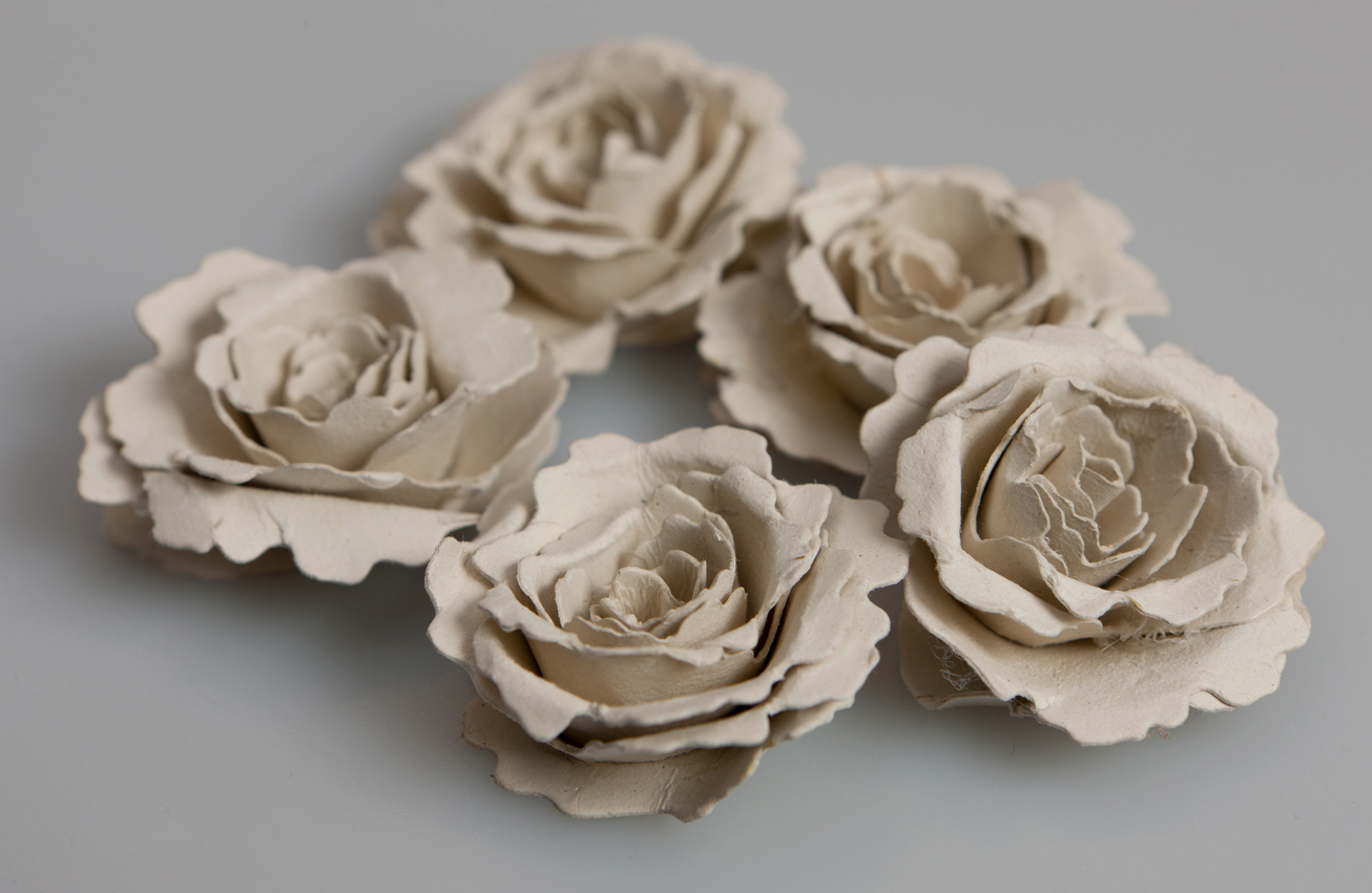 essay flower rose Scientific name: nelumbo nucifera lotus (also indian lotus, sacred lotus) is the national flower of india it is a beautiful flower with appealing color and fragrance.