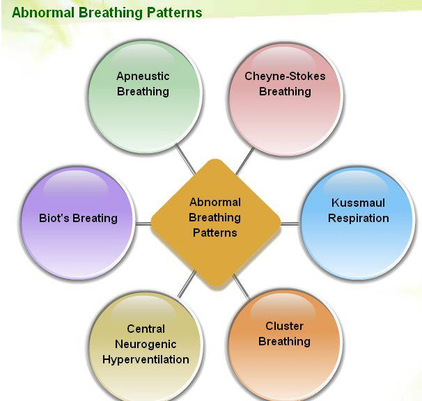 types of breathing patterns