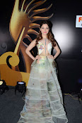 Tamanna At South IIFA Utsav-thumbnail-2