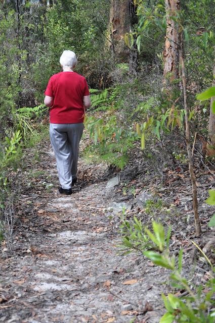Flannel Flower Track, Rumbalara Reserve
