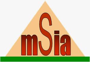 MSIA's Logo
