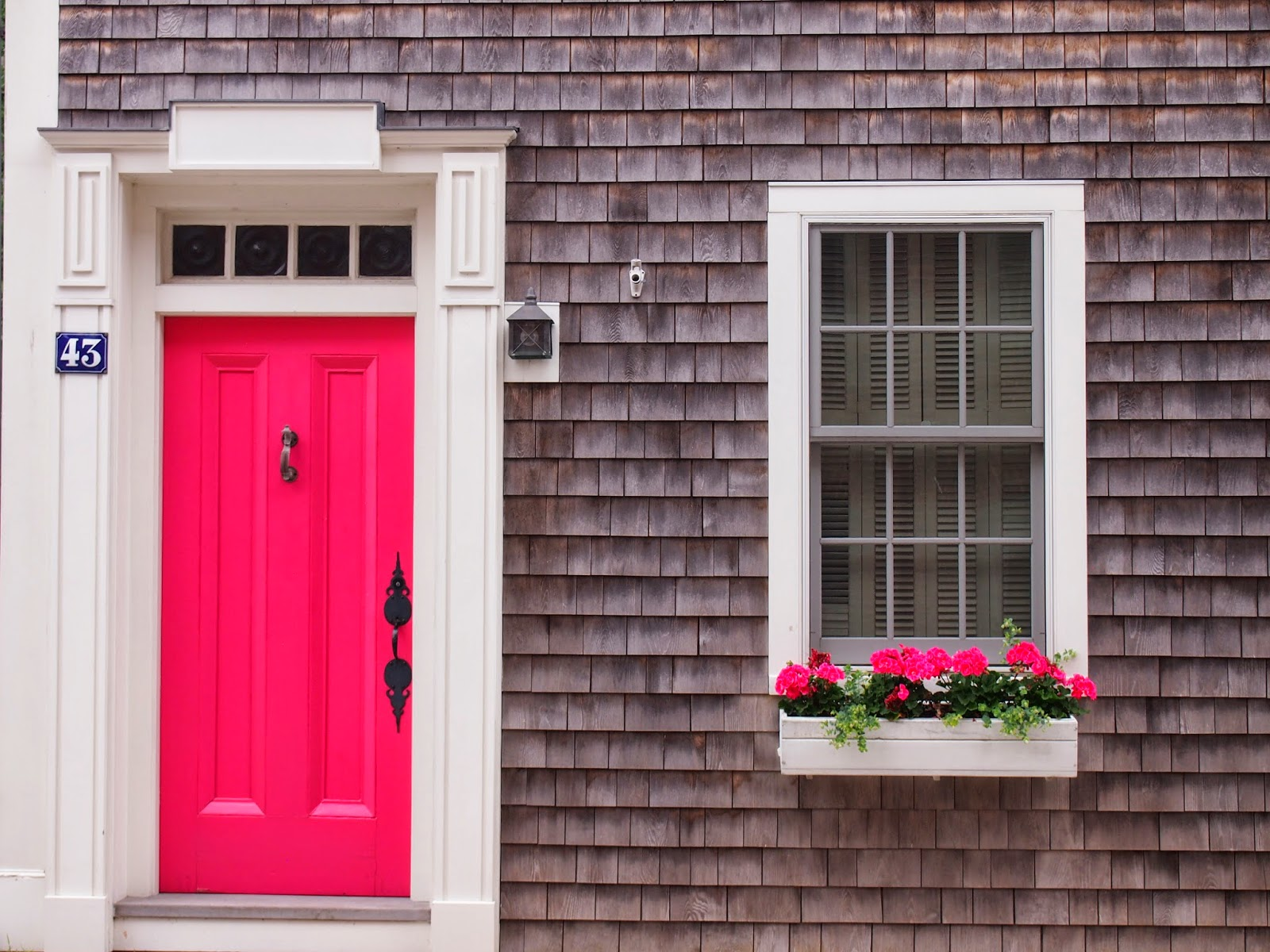 Pink door and pink flowers in Stonington Borough