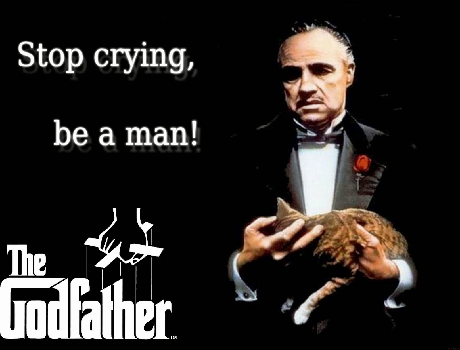 Stop Crying Memes Everything You ...