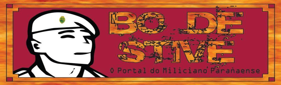 B.O. de Stive