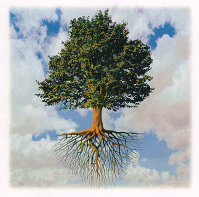 painting of a tree of life showing full canopy and full root system