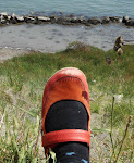 Click THE RED SHOE to Find Me on Twitter