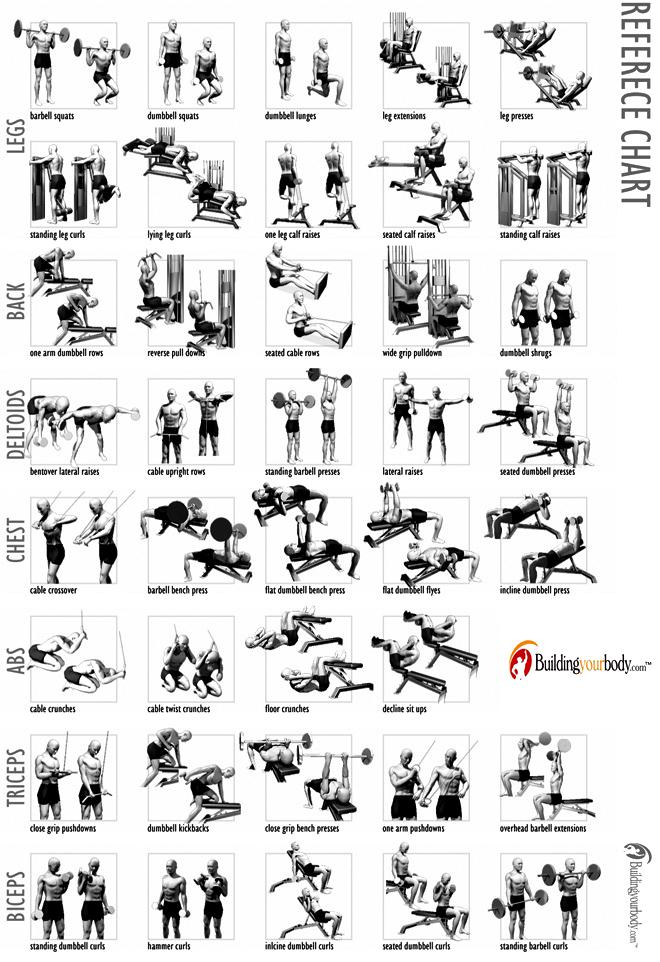 nuvvu nenu prema  body building chart