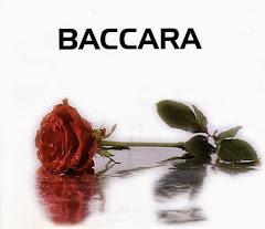 Perfil Ofícial de Baccara en twitter
