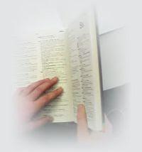 dicionário verbetes