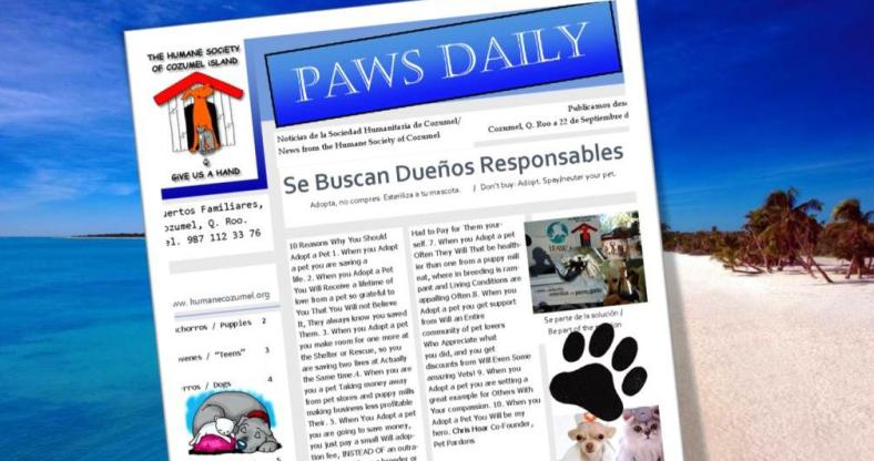 Paws Daily