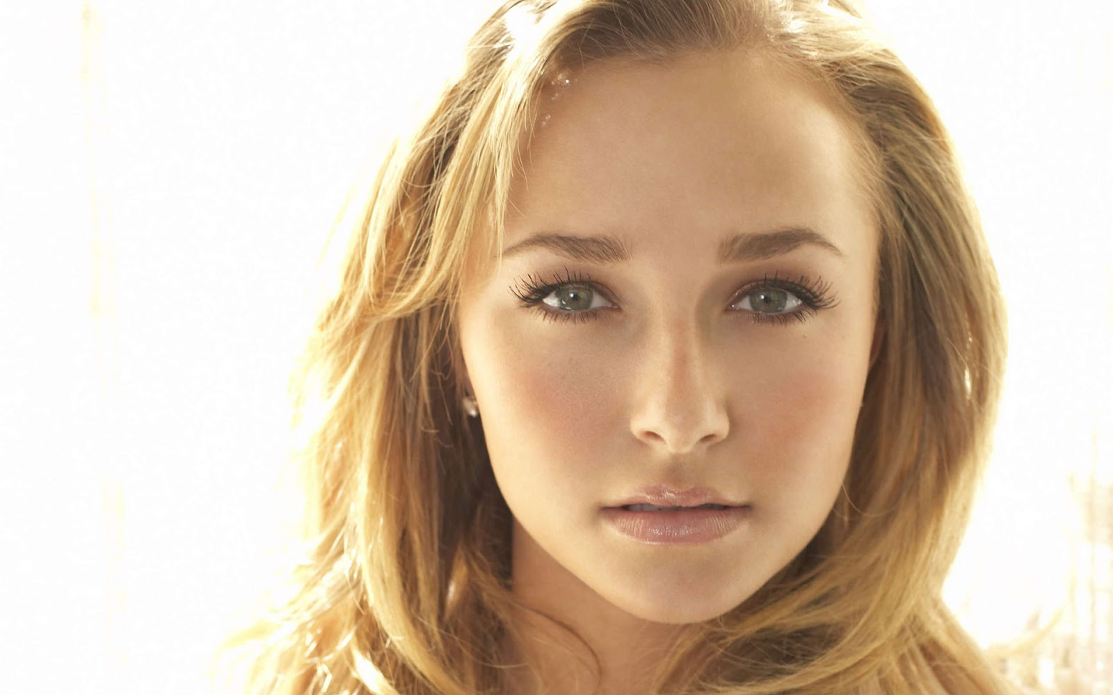 Lovely Wallpapers Hayden Panettiere Cute Amp Sexy Wallpapers