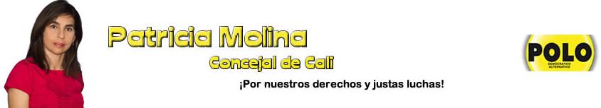 PAGINA DE LA CONCEJAL PATRICIA MOLINA