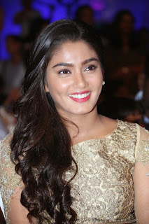 Sana Latest Pictures in Long Dress at Dikkulu Chudaku Ramayya Audio Launch ~ Celebs Next