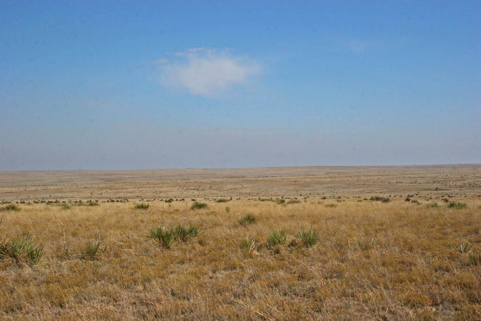 The Homesteaders Were Drawn To The Great Plains For The Fertile Soil And  Their Actions Altered The Landscape, But Even So, I Find This Area  Beautiful