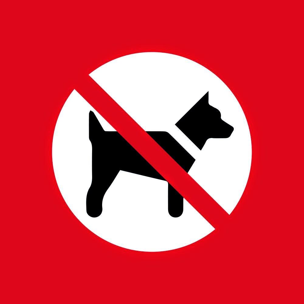 Beispiel Hunde Raus 2