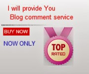 I will provide niche RELEVANT 5 High pr1 blog comment