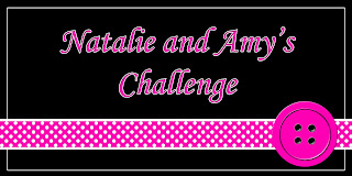 Natalie and Amy's Challenge