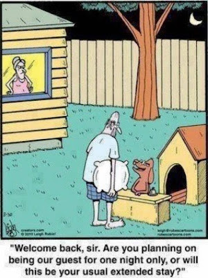 Funny Husband Dog House Hotel Cartoon Joke