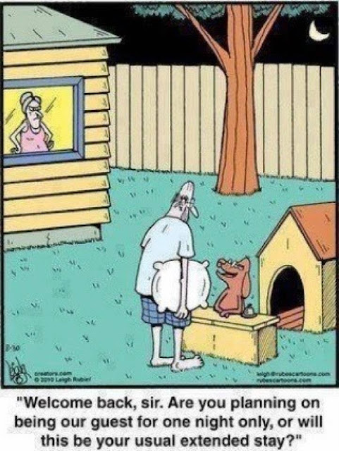 Funny Husband Dog House Hotel Cartoon Joke