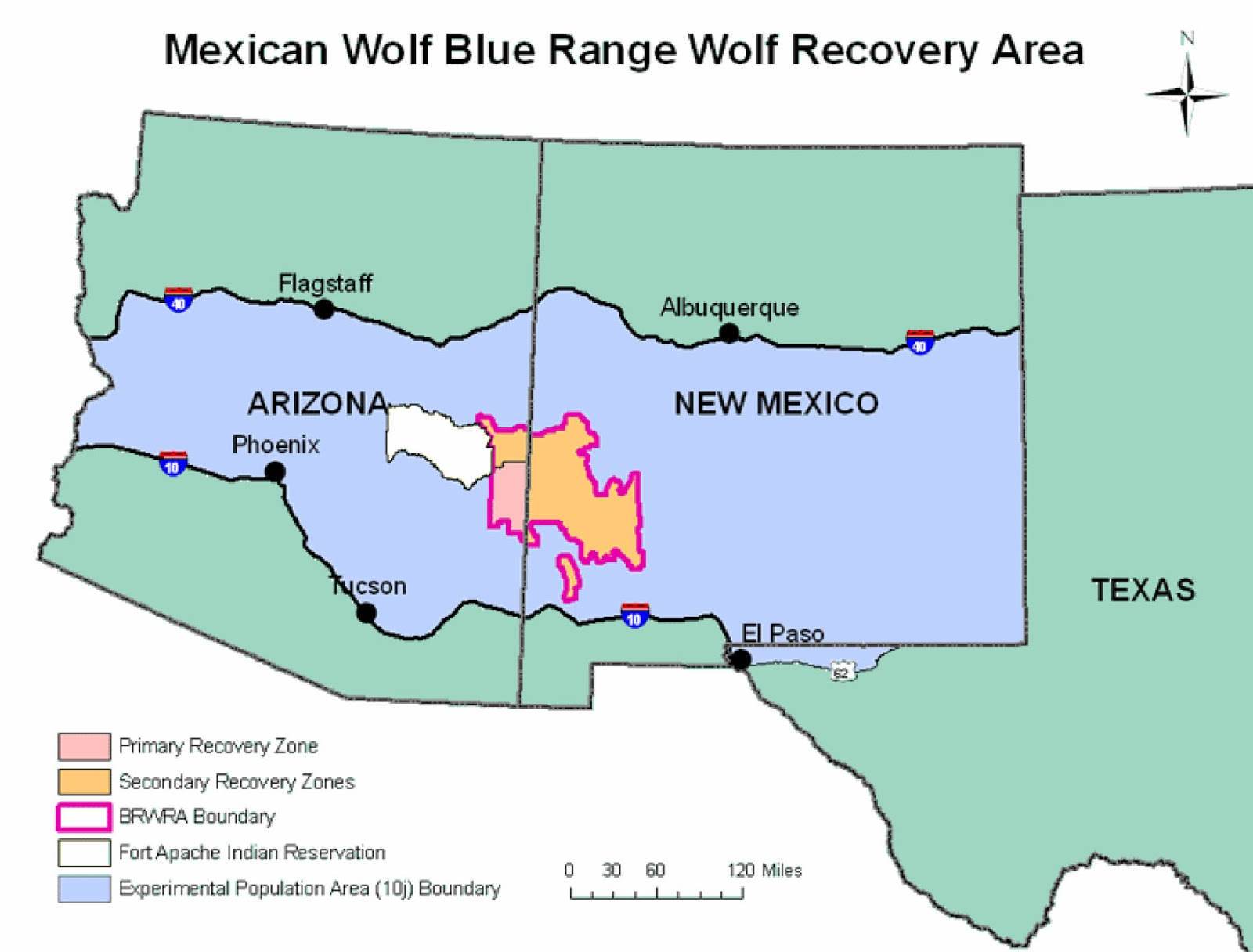 mexican wolf recovery area